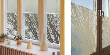 Windowfilms1
