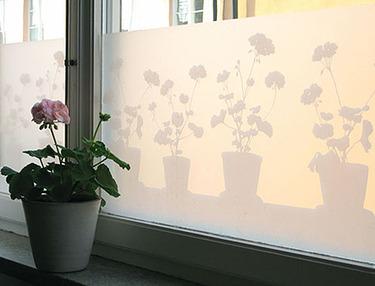 Windowfilms3